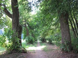Memmingen-Ferthofen: Tulpenbaumallee